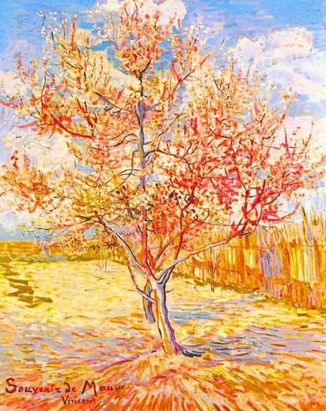 Painting - Peach Tree In Blossom by Vincent Van Gogh