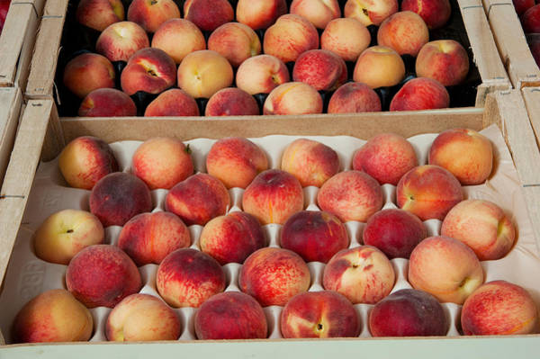 Lourmarin Photograph - Peaches At A Market Stall, Lourmarin by Panoramic Images