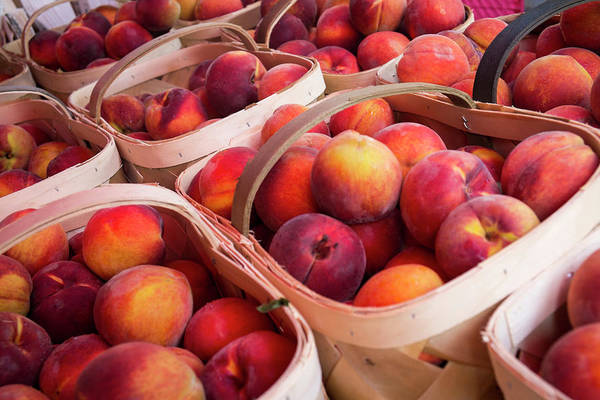 Wall Art - Photograph - Peaches For Sale At A Farmers Market by Julien Mcroberts