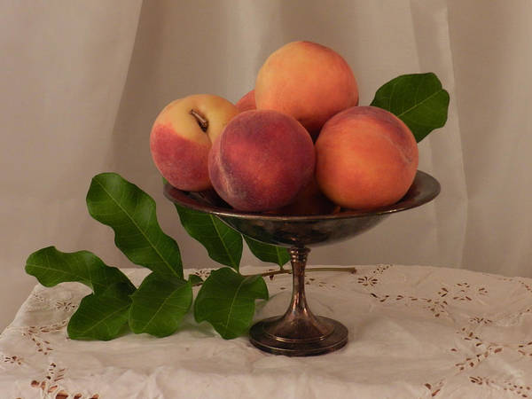 Photograph - Peaches On Silver by Grace Dillon