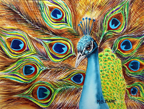 Peafowl Painting - Peacock by Maria Barry