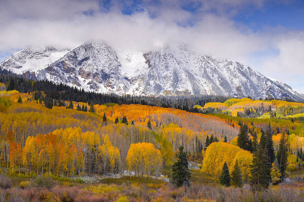 Wall Art - Photograph - Peak Fall Colors by Tim Reaves