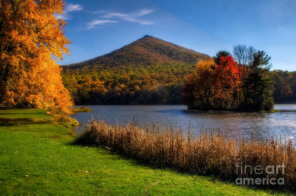 Photograph - Peaks Of Otter Autumn  by Deborah Scannell