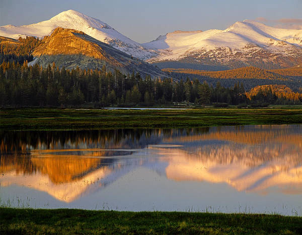 Photograph - 6m6530-a-peaks Reflected Touolumne Meadows  by Ed  Cooper Photography