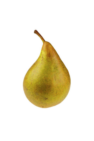 Horticulture Photograph - Pear by Geoff Kidd/science Photo Library
