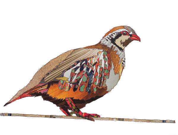 Stitch Painting - Pear The Partridge by MGL Meiklejohn Graphics Licensing