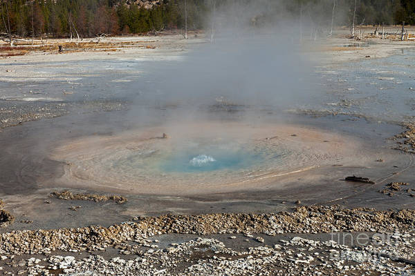 Photograph - Pearl Geyser At Norris Geyser Basin by Fred Stearns