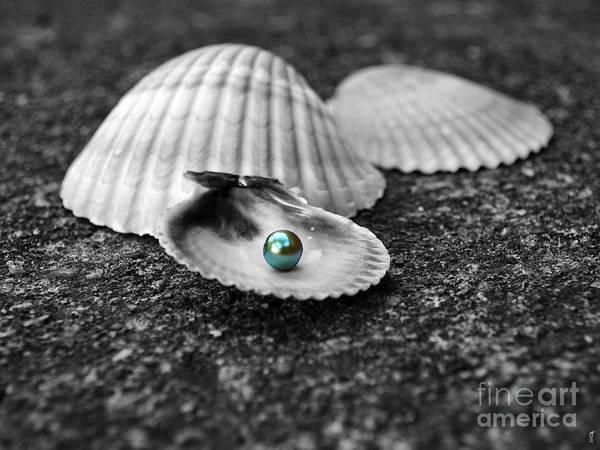 Photograph - Pearls Of Wisdom I by Jai Johnson