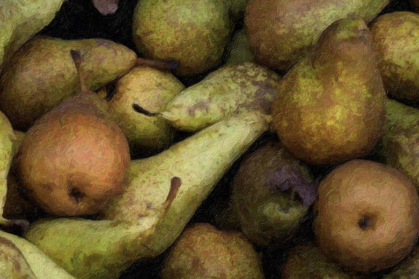 Photograph - Pears At The Poggibonsi Market by Curtis Dale