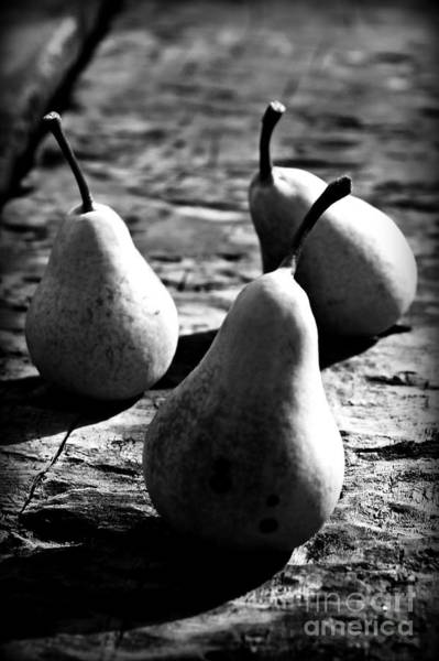 Daguerrotype Photograph - Pears by Clare Bevan