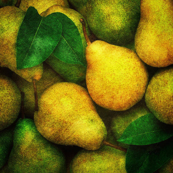 Photograph - Pears by Mauro Celotti
