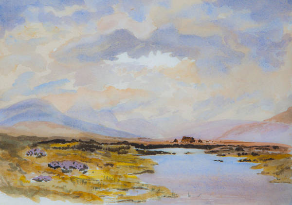 Peat Bogs Of Connemara Art Print