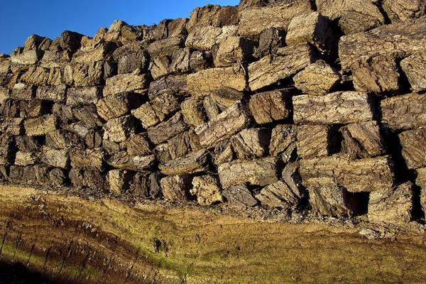 Fossil Fuel Photograph - Peat Stack by Bildagentur-online/mcphoto-rolfes/science Photo Library