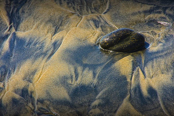 Photograph - Pebble On The Beach At Torrey Pines State Beach In Southern California No. 1304 by Randall Nyhof