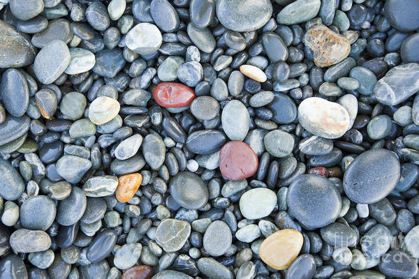 Wall Art - Photograph - Pebbles Birdlings Flat Beach New Zealand by Colin and Linda McKie