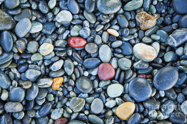 Wall Art - Photograph - Pebbles by Colin and Linda McKie