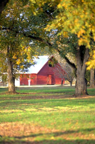 Photograph - Pecan Orchard Barn by Gordon Elwell