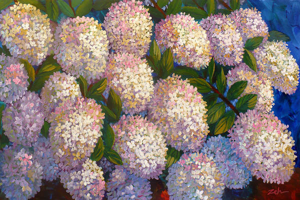 Peegee Hydrangeas Art Print