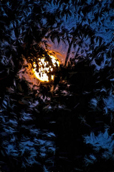 Photograph - Peek-a-boo Moon In A Cobalt Sky by Denise Beverly