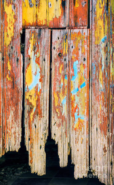 Wood Planks Photograph - Peeling Door by Carlos Caetano