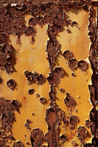 Peeling Photograph - Peeling Paint On A Rusty Metal Tank by Steve Allen/science Photo Library