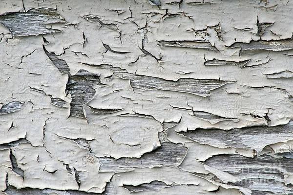 Photograph - Peeling Paint On Boat by Dan Friend