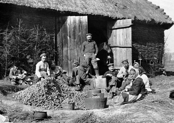 Galicia Photograph - Peeling Potatoes For Soldiers by Underwood Archives