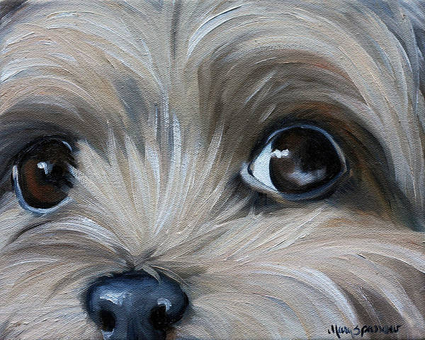 Yorkie Wall Art - Painting - Peeper by Mary Sparrow