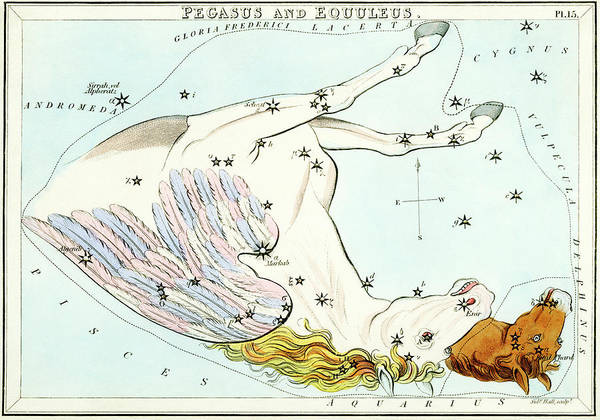 Mythological Photograph - Pegasus And Equuleus Constellations by Royal Astronomical Society/science Photo Library