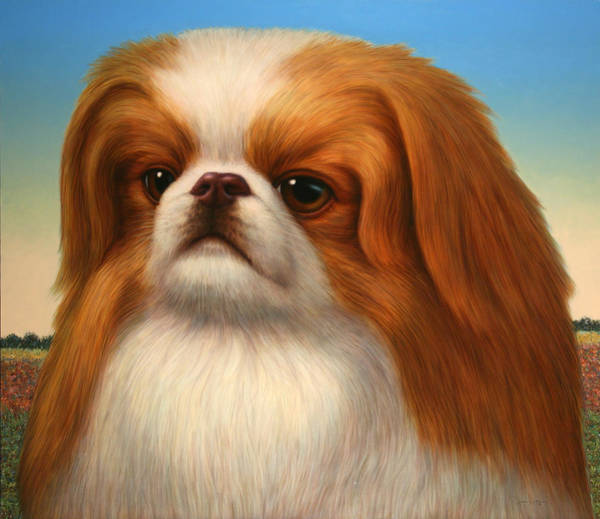 Pets Painting - Pekingese by James W Johnson