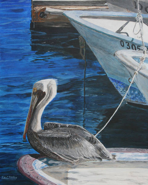Wall Art - Painting - Pelican On A Boat by Ian Donley