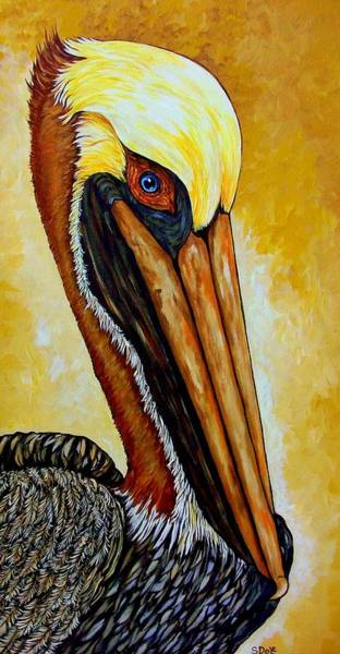 Wall Art - Painting - Pelican by Sherry Dole