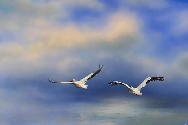 Photograph - Pelicans At Sea by Jai Johnson