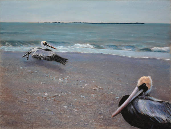 Painting - Pelicans by Christopher Reid