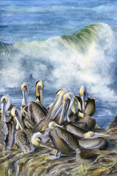 Pelican Wall Art - Painting - Pelicans by Karen Wright