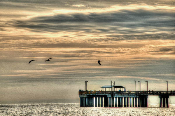 Photograph - Pelicans Over The Pier by Michael Thomas