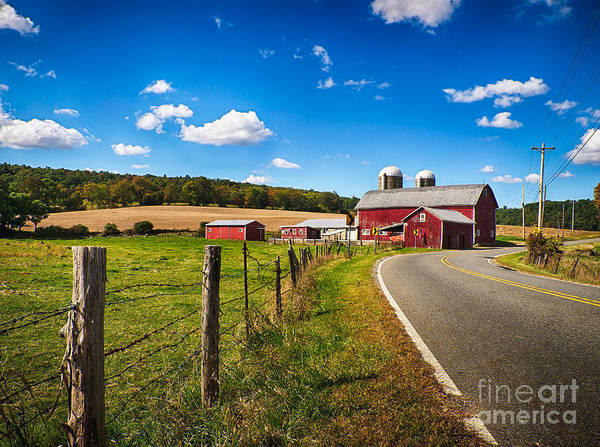 Photograph - Pelletown Road by Mark Miller