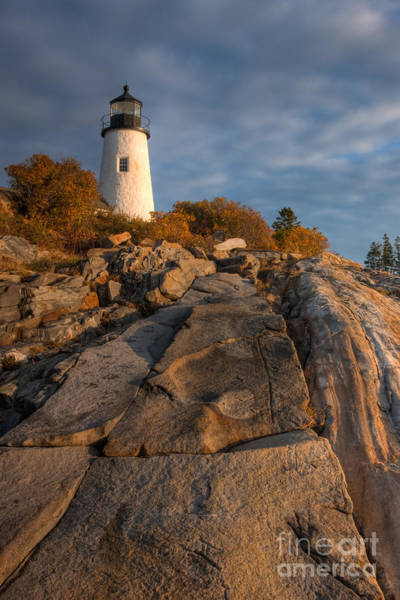 Photograph - Pemaquid Point Light I by Clarence Holmes