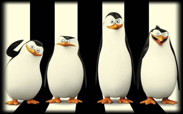 Penguins Of Madagascar Art Print