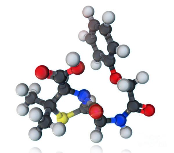 Wall Art - Photograph - Penicillin V Molecular Model by Evan Oto
