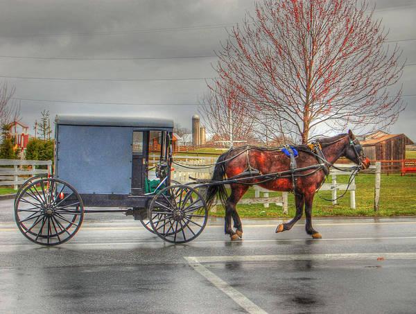 Photograph - Pennsylvania Amish by Bill Hamilton