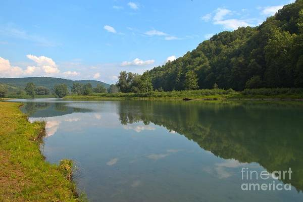 Tioga Photograph - Pennsylvania Forest Reflections by Adam Jewell