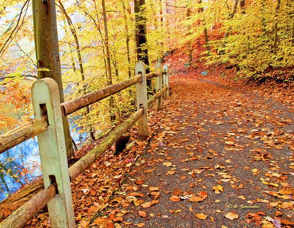 Pennypack Trail Philadelphia Fall Art Print