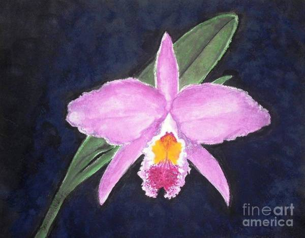 Painting - Penny's Orchid by Denise Railey