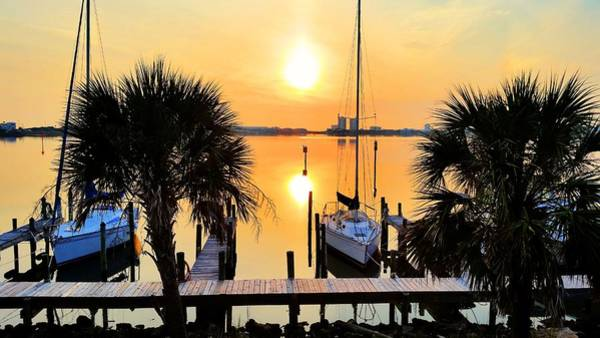 Photograph - Pensacola Beach Harbor by JC Findley