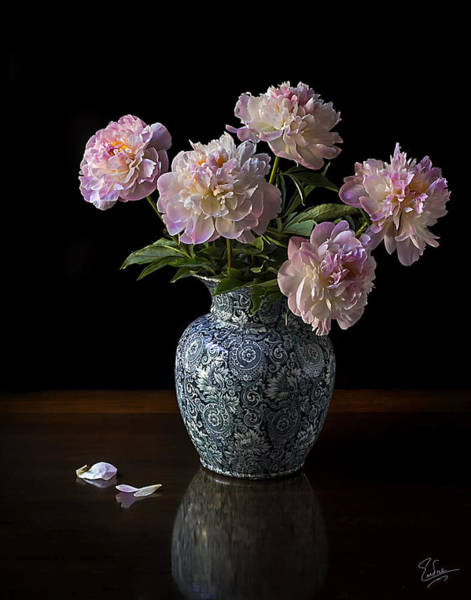 Photograph - Peonies In A Blue Vase by Endre Balogh