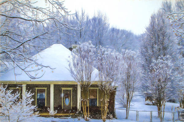 Photograph - Peppering Down - Snowy Winter Landscape by Barry Jones