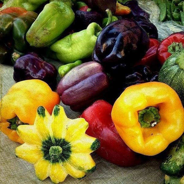 Still Life Wall Art - Photograph - Peppers And Squash  by Charlene Mitchell