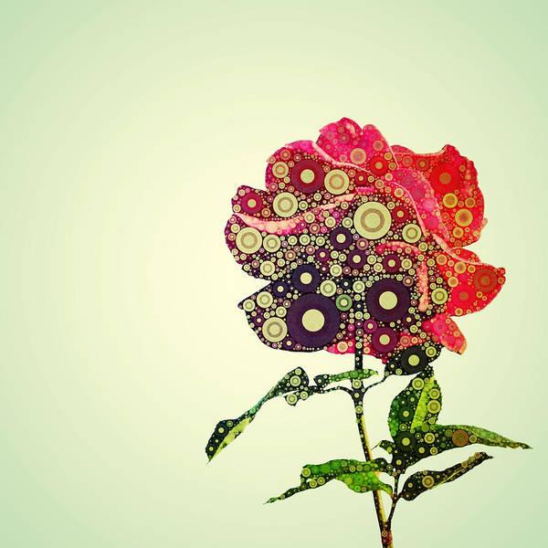 Photograph - Percolated Rose by Natasha Marco