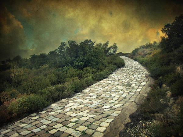 Yellow Brick Road Wall Art - Photograph - Perdus Et Trouves by Zapista Zapista